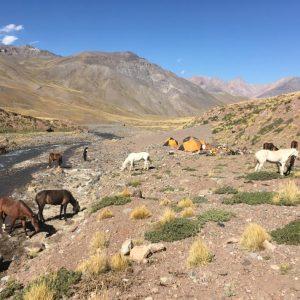 campamento cruce a caballo