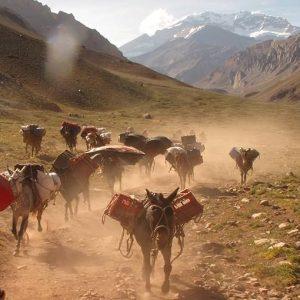 aconcagua trekking tour